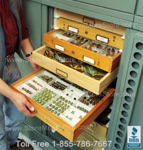 museum racks shelves storage preservation cabinets archival geology
