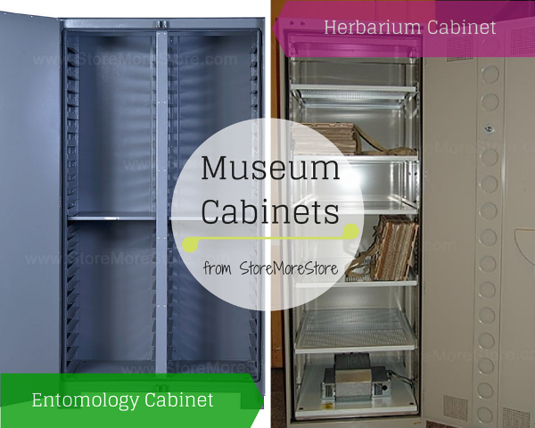 Entomology and Herbarium Museum Cabinets